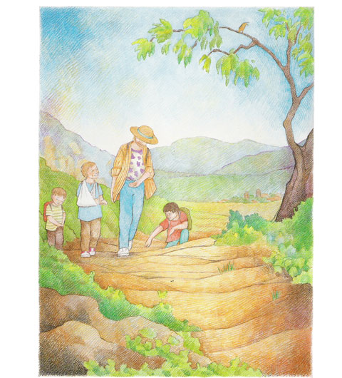 the family walks along a path - illustration from Clouds on the Mountain